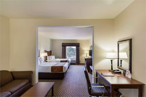 Comfort Suites San Antonio North - Stone Oak  - 1 King Bed or 2 Queen Beds with Sofa Bed - Free Breakfast