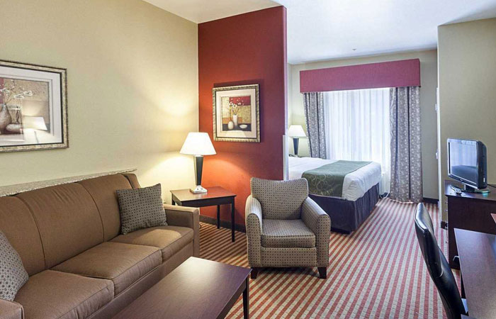 Comfort Suites San Antonio near Six Flags Fiesta Texas  - king