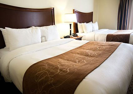 Comfort Suites San Antonio Stone Oak - double